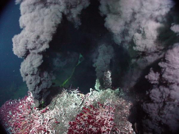 [图片说明]:海底的热液喷口被认为是地球上生命的发源地。